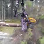 林業におけるイノベーション