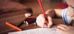 2012年生徒の学習到達度調査(PISA)における日本の好成績から思うことあれこれ